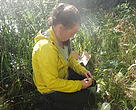 Loblaw Water Fund recipient EcologyNorth collecting samples near Trout Lake, NWT.