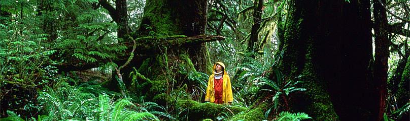 © Mark Hobson / WWF-Canada
