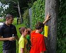 North Sydney Eco-Action Super Heroes. Spring 2015 Go Wild grant recipients.
