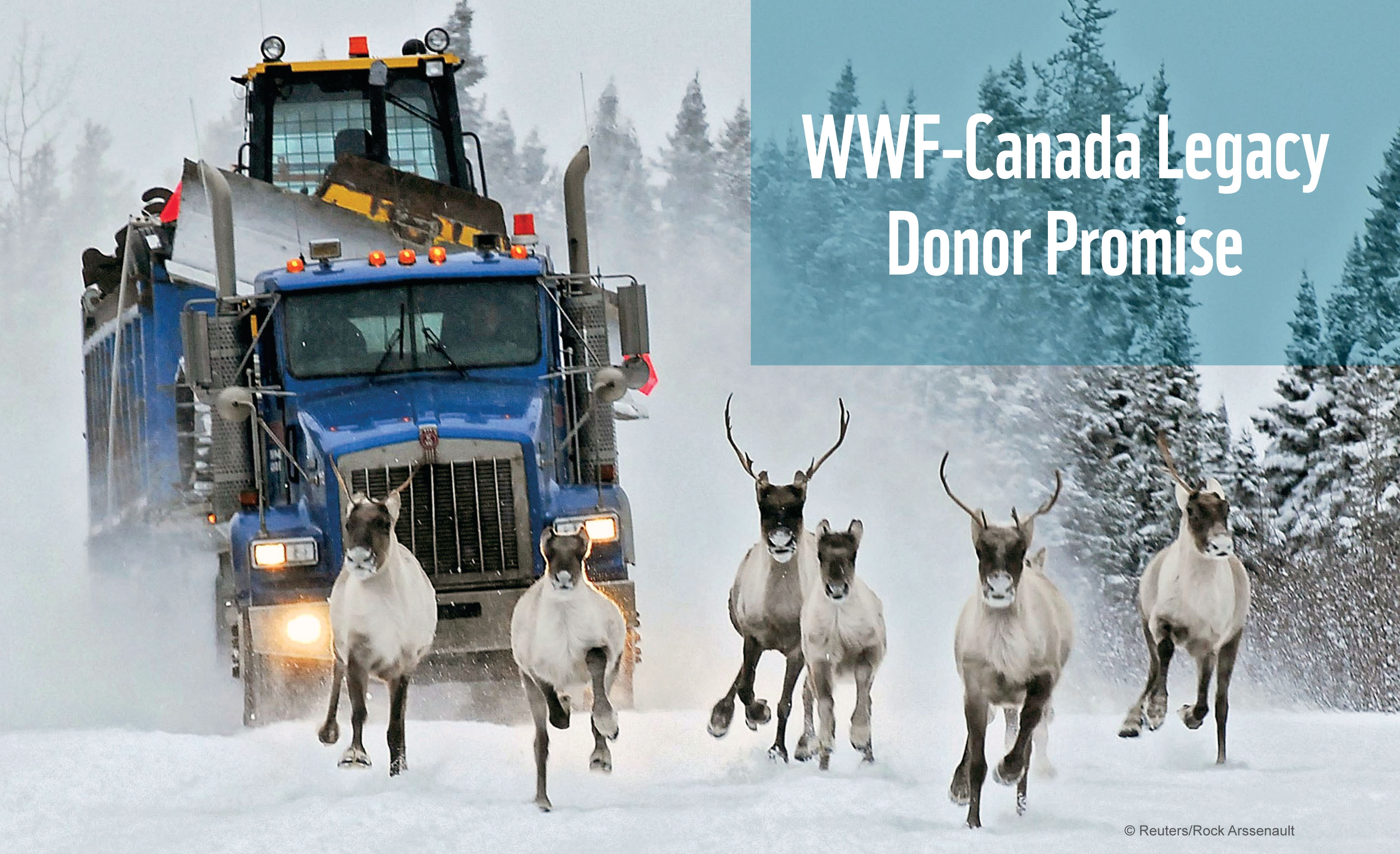 WWF-Canada Legacy Donor Promise