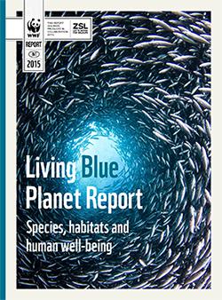 Le rapport Planète vivante <i>Blue</i>