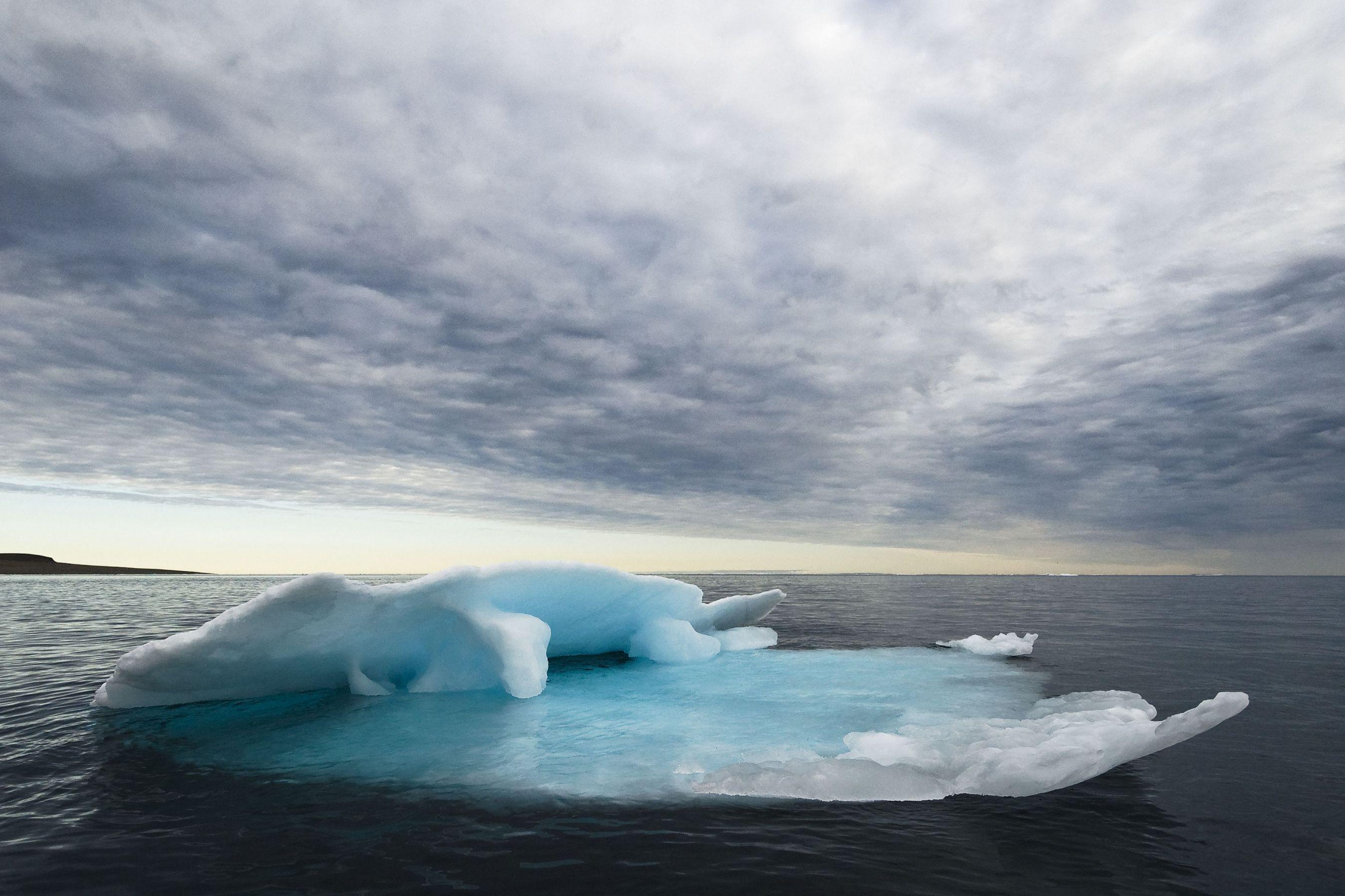 ©: Andrew S. Wright / WWF-Canada