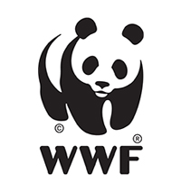 Volunteer opportunity in Madagascar's Northern Mozambique Channel with WWF Volun...