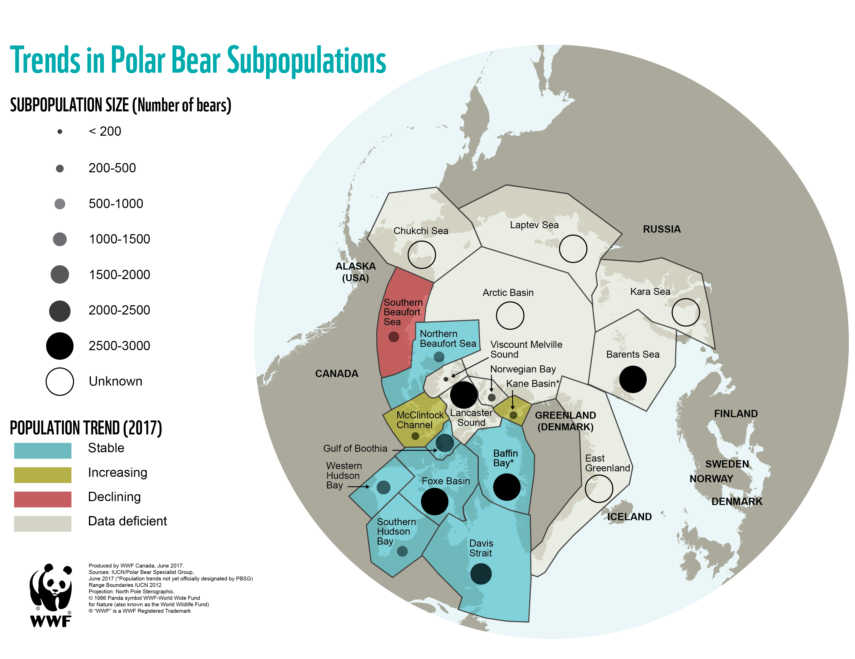 Polar bear subpopulations