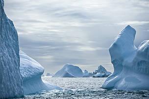 © Robert Van Waarden / WWF