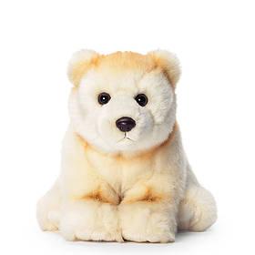 Spirit Bear  © WWF-Canada