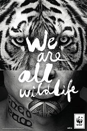 © WWF-Canada