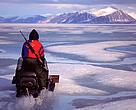 Man on skidoo racing across the ice, Baffin Island, Nunavut, Canada, Arctic.